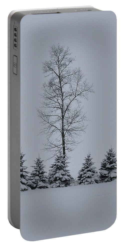 Trees Portable Battery Charger featuring the photograph Trees In The Snow by David Arment