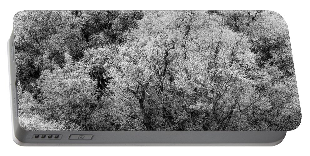 Adda Portable Battery Charger featuring the photograph Trees On The River by Roberto Pagani
