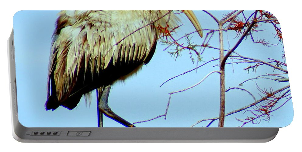 Everglades Portable Battery Charger featuring the photograph Treetop Stork by John Wall