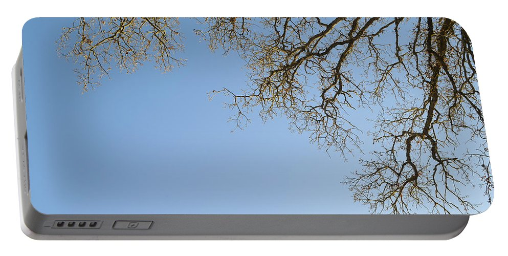 Tree Portable Battery Charger featuring the photograph Treeveins by Erik Burg