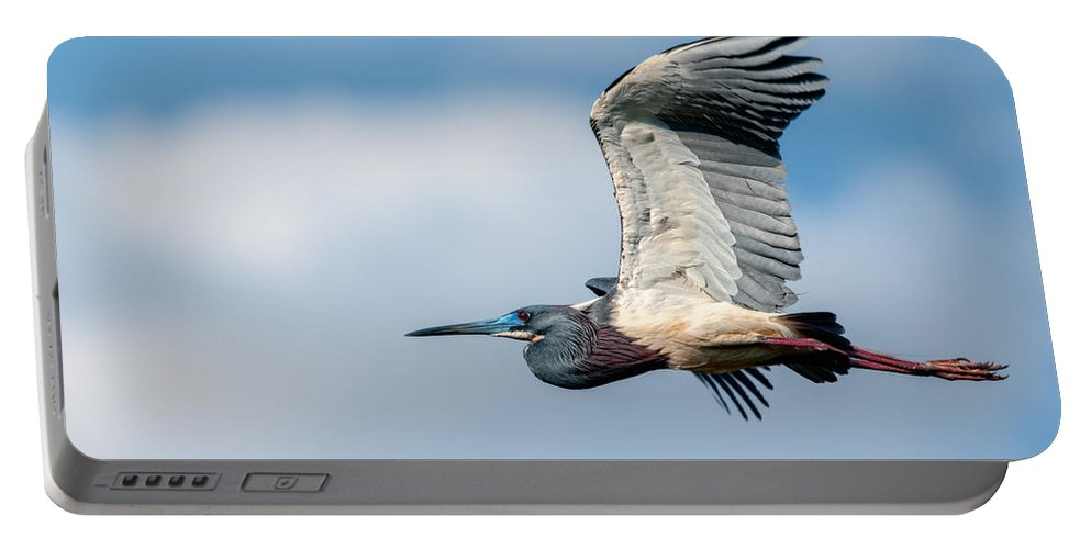 Art Portable Battery Charger featuring the photograph Tri-colored Heron In Flight by Christopher Holmes
