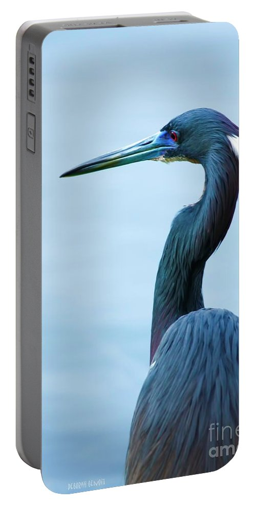 Tri Heron Portable Battery Charger featuring the photograph Tri Colored Pose by Deborah Benoit
