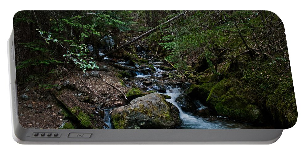 Mount Rainier National Park Portable Battery Charger featuring the photograph Trickling Spring by Robert J Caputo