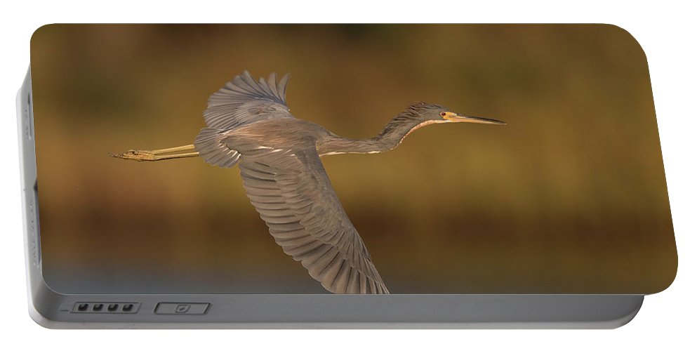 Tricolored Heron Portable Battery Charger featuring the photograph Tricolored Heron by George DeCamp