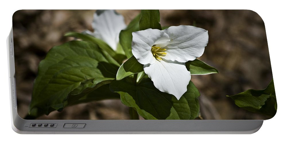 Trillium Portable Battery Charger featuring the photograph Trillium Grandiflorum by Teresa Mucha
