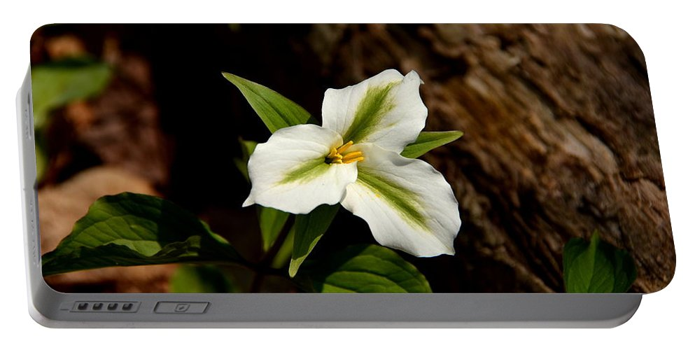 Trillium Portable Battery Charger featuring the photograph Trillium by Stephen Path
