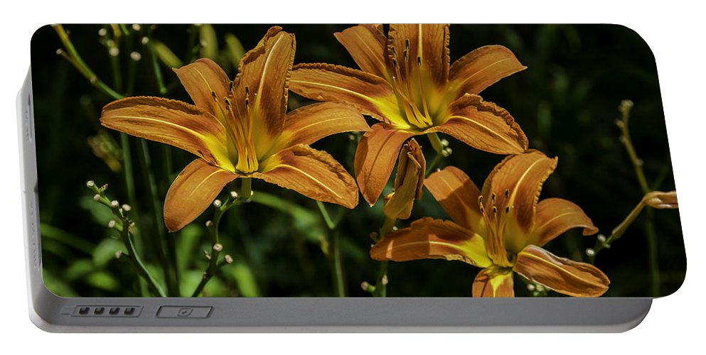 Flowers Portable Battery Charger featuring the photograph Trio Of Orange Tiger Lilies by Jennifer Wick