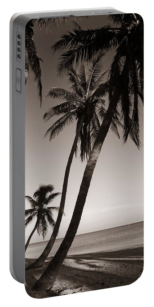Black And White Photography Portable Battery Charger featuring the photograph Triple Palms by Susanne Van Hulst