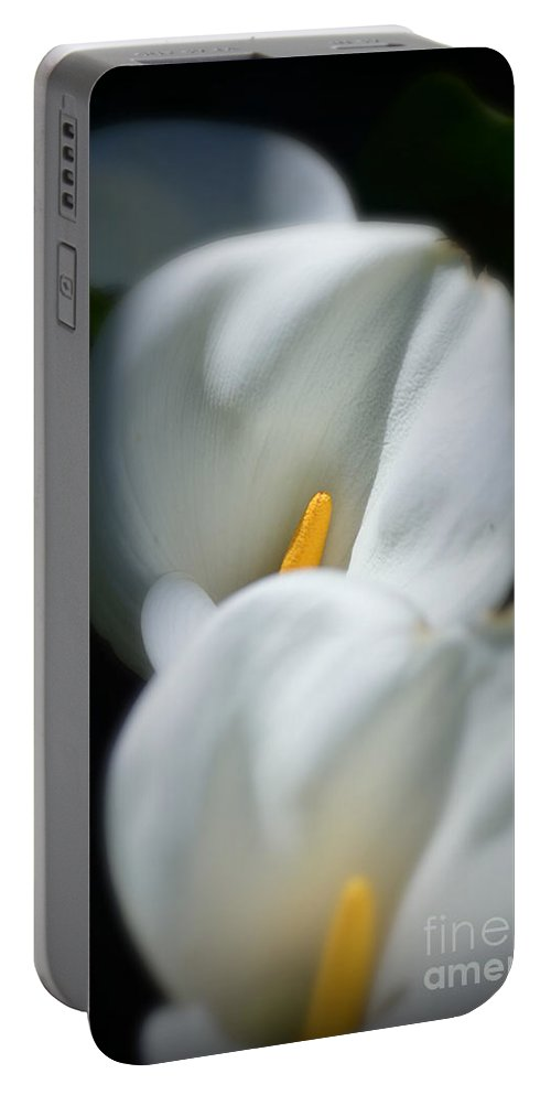 Calla Lily Portable Battery Charger featuring the photograph Triple Play by Out West Originals