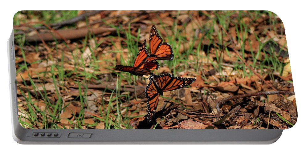Trois Portable Battery Charger featuring the photograph Trois Monarques by Craig Corwin
