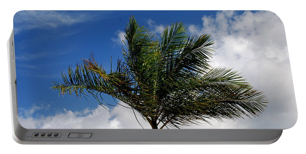 Palm Tree Portable Battery Charger featuring the photograph Tropical Breeze by Gary Wonning