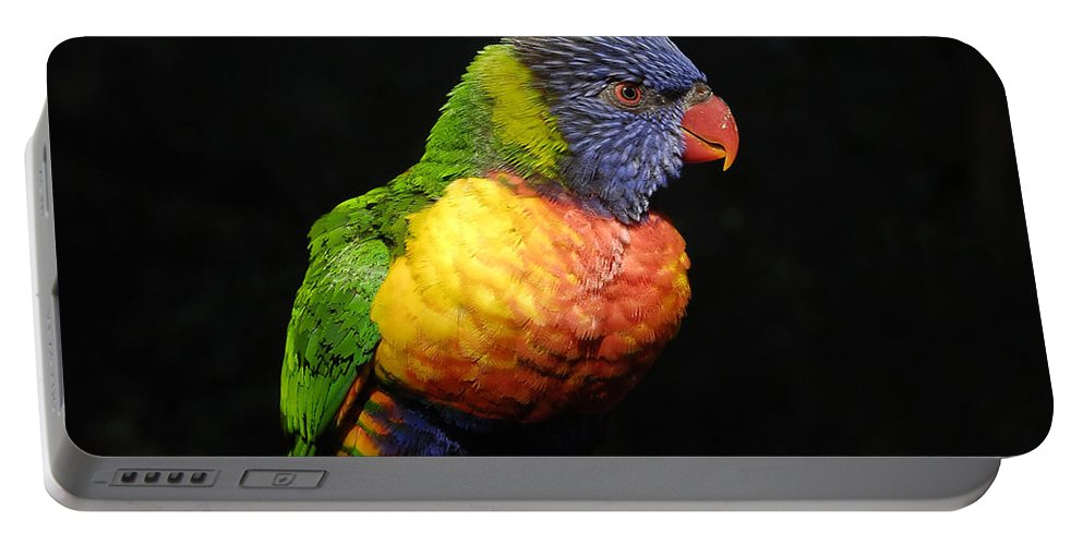 Tropical Portable Battery Charger featuring the photograph Tropical Colors by David Lee Thompson