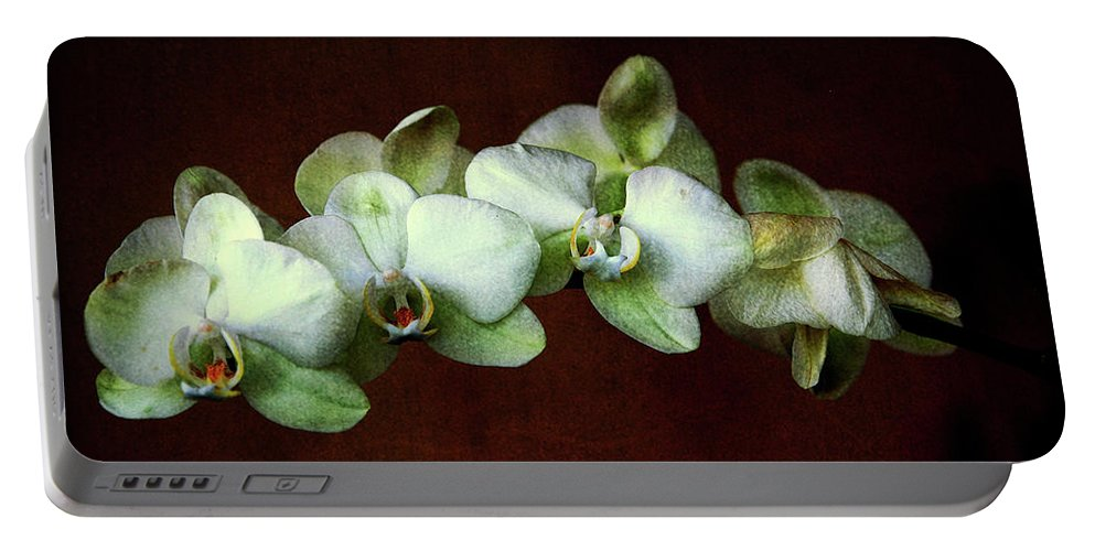 Orchids Portable Battery Charger featuring the photograph Tropical Dream by Susanne Van Hulst