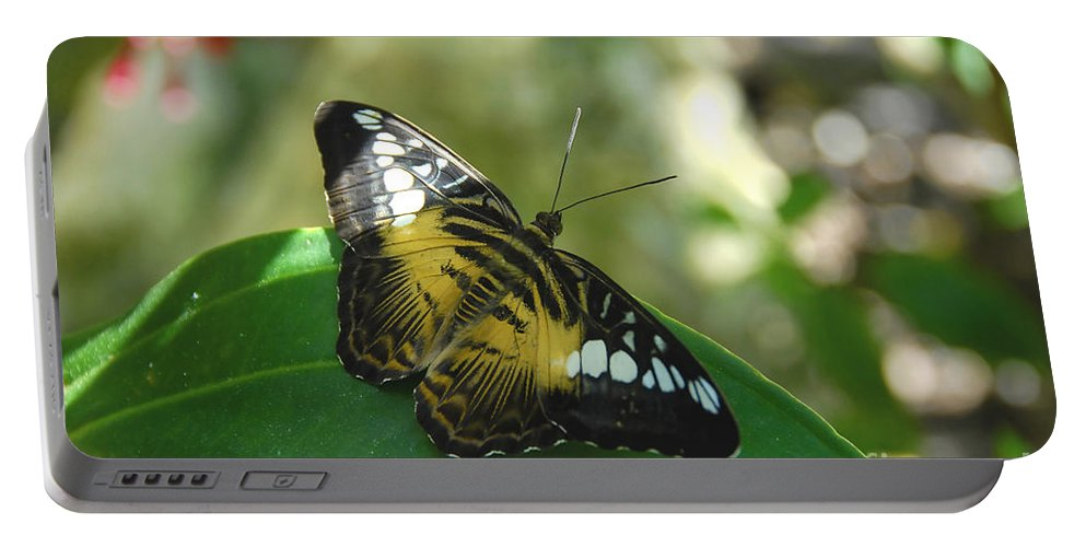 Butterfly Portable Battery Charger featuring the photograph Tropical Garden Beauty by David Lee Thompson