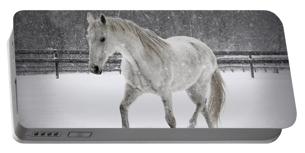Horse Portable Battery Charger featuring the photograph Trot In The Snow by Tina Meador
