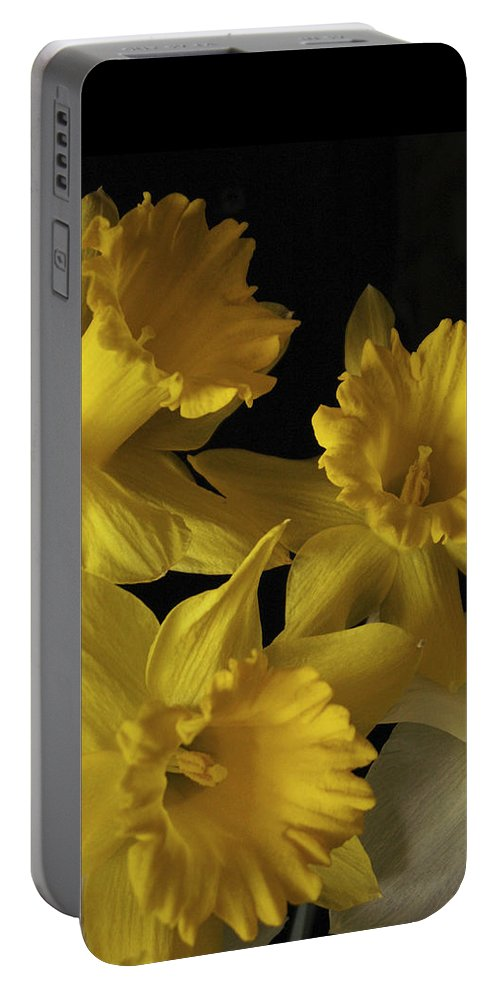 Macro Portable Battery Charger featuring the photograph Trumpet Daffodils by Nancy Griswold