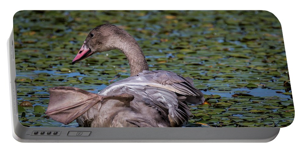 Gray Portable Battery Charger featuring the photograph Trumpeter Swan Foot Wave by Patti Deters