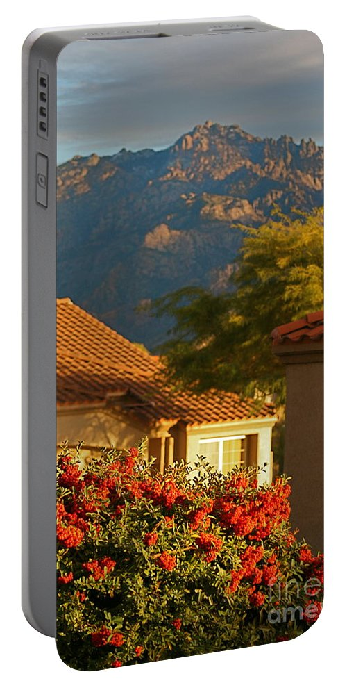 Mountains Portable Battery Charger featuring the photograph Tucson Beauty by Nadine Rippelmeyer