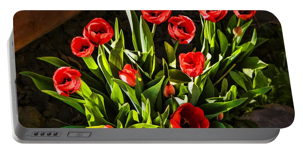 Tulip Beauties Portable Battery Charger featuring the photograph Tulip Beauties by Priscilla Burgers