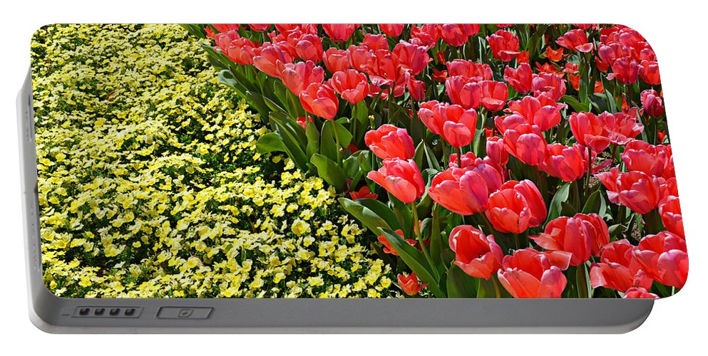 Spring Portable Battery Charger featuring the photograph Tulip Line by Ally White