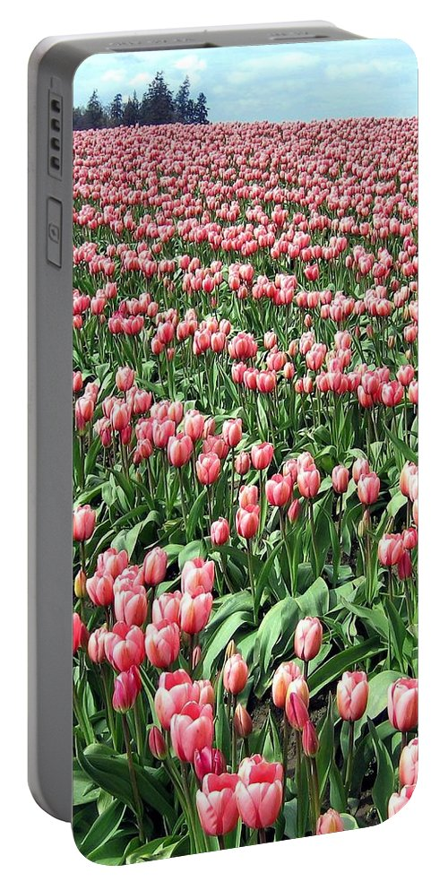 Agriculture Portable Battery Charger featuring the photograph Tulip Town 14 by Will Borden