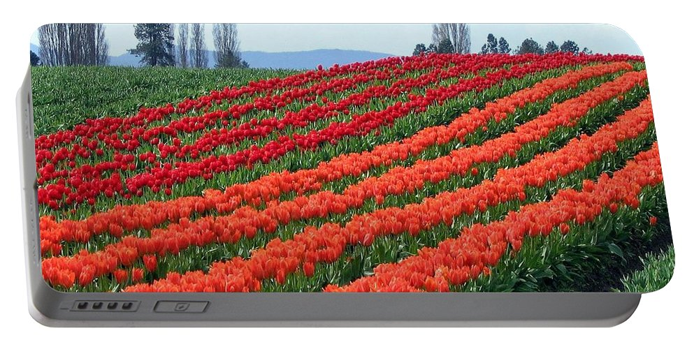 Agriculture Portable Battery Charger featuring the photograph Tulip Town 18 by Will Borden