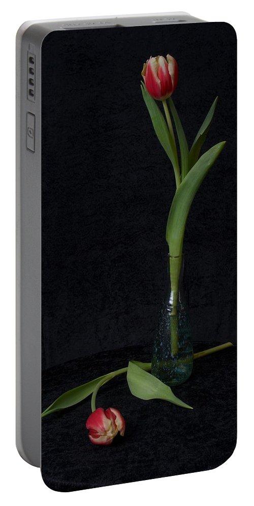 Lehtokukka Portable Battery Charger featuring the photograph Tulips by Jouko Lehto