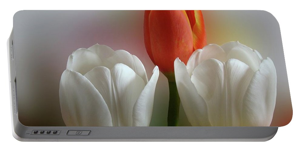 Spring Flowers Portable Battery Charger featuring the photograph Tulips by Sandy Keeton