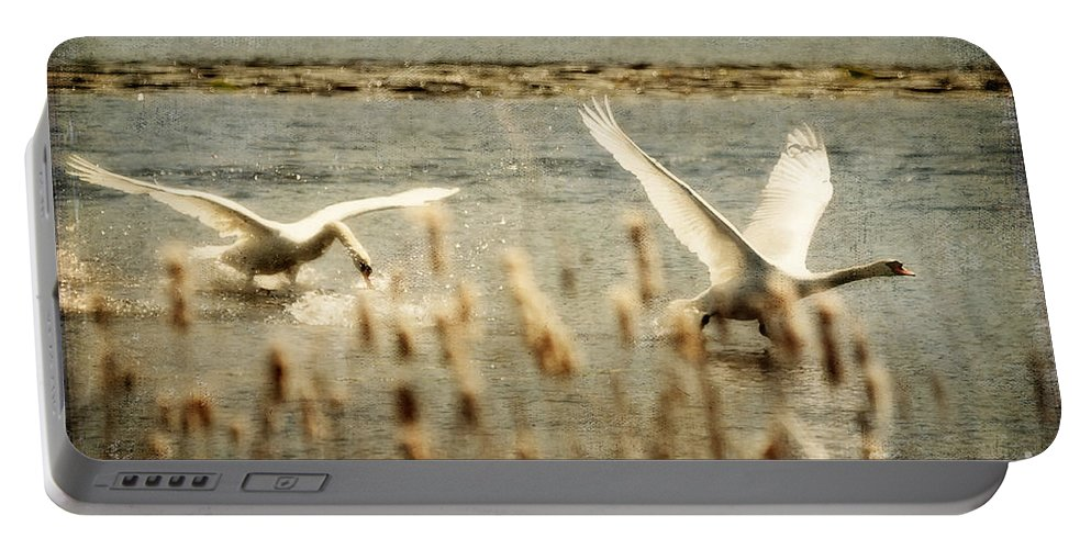Swans Portable Battery Charger featuring the photograph Turf Wars by Lois Bryan