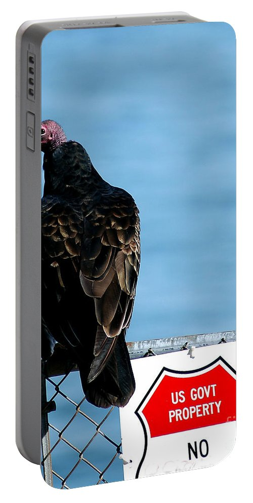 Clay Portable Battery Charger featuring the photograph Turkey Buzzard by Clayton Bruster