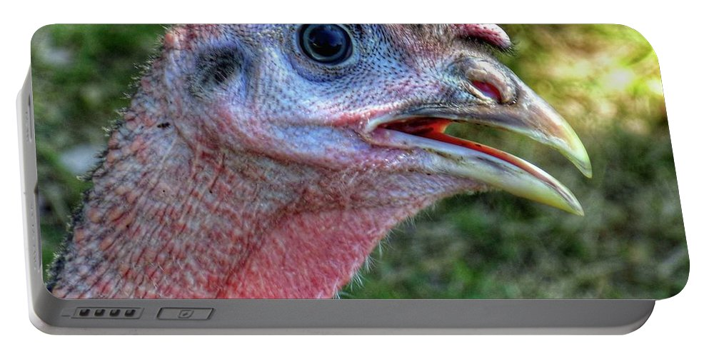 Turkey Head Close-up Portable Battery Charger featuring the photograph Turkey Named Thanksgiving by John Myers