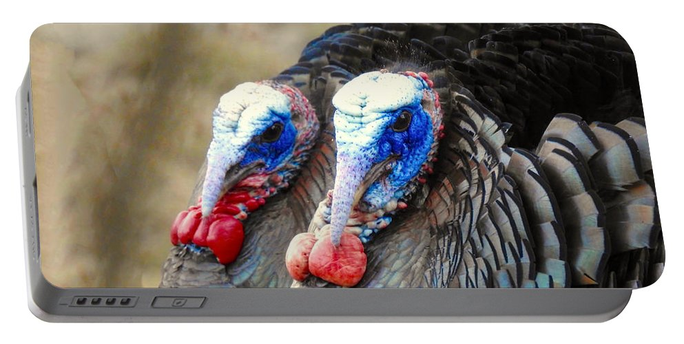 Turkeys Portable Battery Charger featuring the photograph Turkey Prowl Closeup by Beth Myer