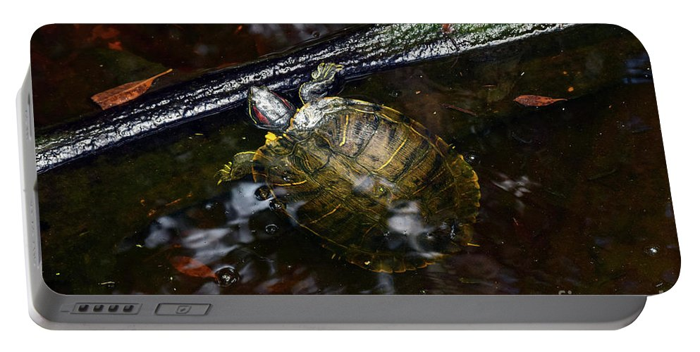 Turtle Portable Battery Charger featuring the photograph Turtle And The Stick by William Tasker