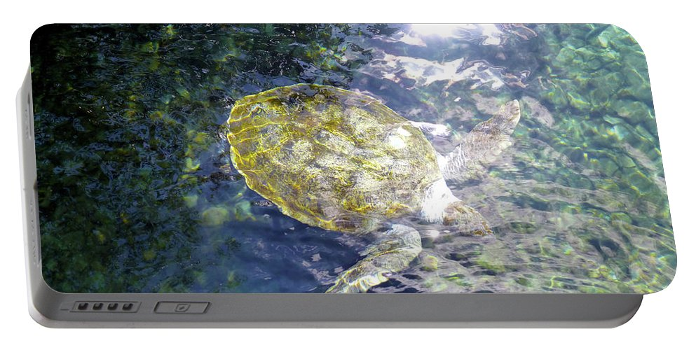 Turtle Portable Battery Charger featuring the photograph Turtle Water Glide by Francesca Mackenney