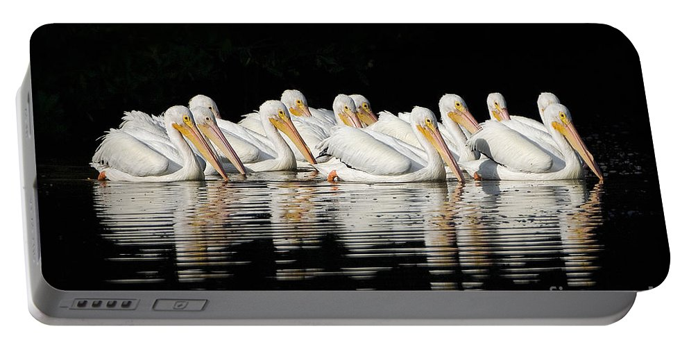 Pelicans Portable Battery Charger featuring the photograph Twelve White Pelicans On A Dark Background. by John Harmon