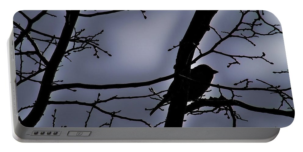 Night Portable Battery Charger featuring the photograph Twilight by Lauren Radke