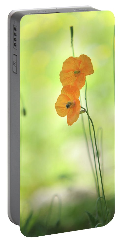 Jenny Rainbow Fine Art Photography Portable Battery Charger featuring the photograph Twins. Orange Poppies by Jenny Rainbow