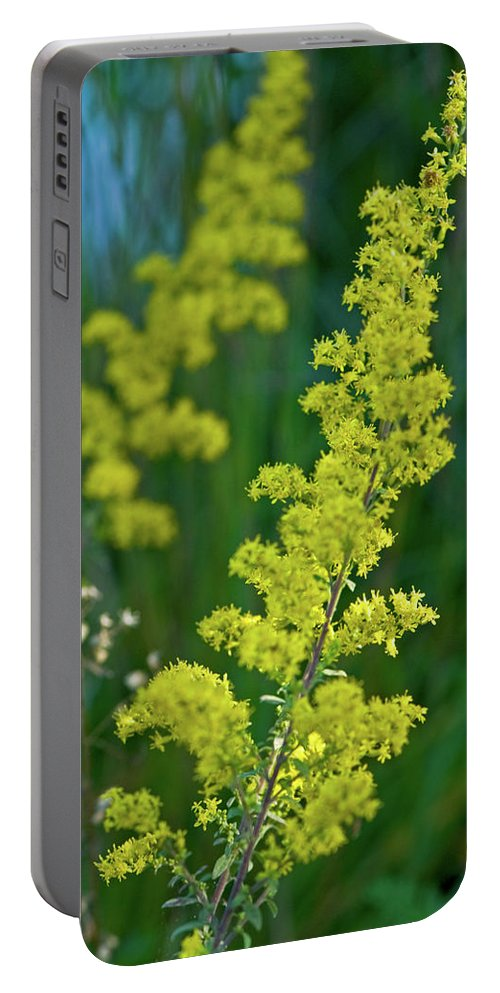 Goldenrod Portable Battery Charger featuring the photograph Twins by Paul Mangold