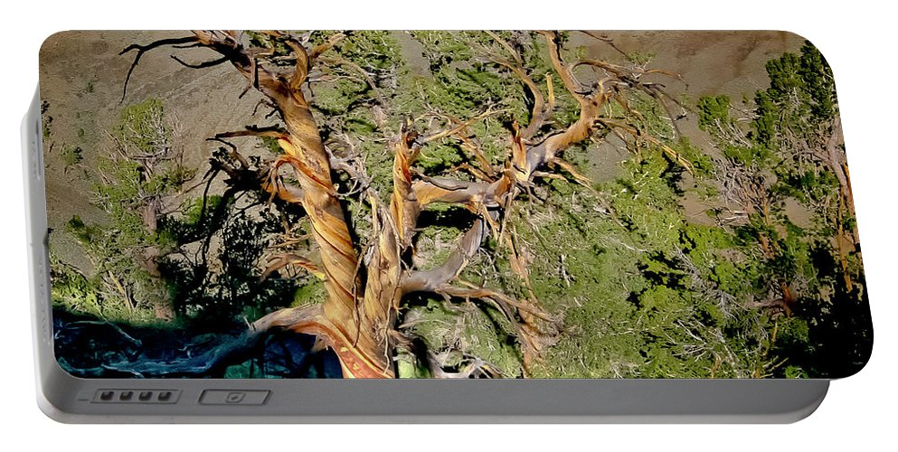 Bristlecone Portable Battery Charger featuring the photograph Twisted Bristlecone by Albert Seger