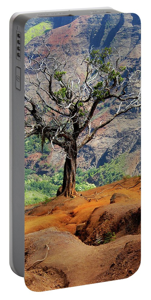 Tree Portable Battery Charger featuring the photograph Twisted Tree, Wiamea Canyon, Kawai Hawaii by Michael Bessler