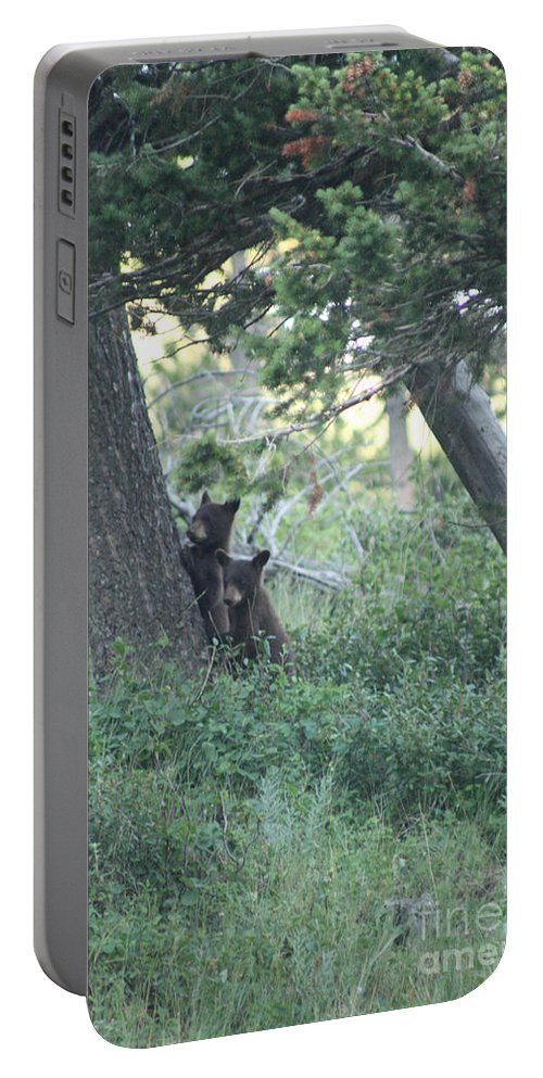 Two Portable Battery Charger featuring the photograph Two Bear Cubs by Mary Mikawoz