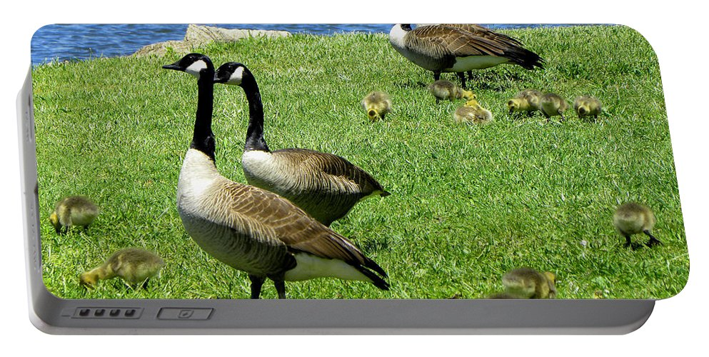 Geese Portable Battery Charger featuring the photograph Two By Two by Sandi OReilly