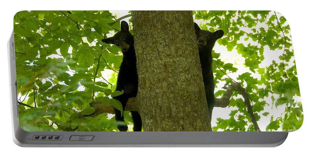 Two Portable Battery Charger featuring the photograph Two Cubs by David Lee Thompson