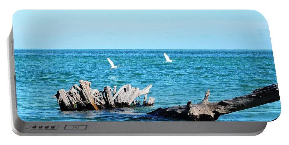 Blue Portable Battery Charger featuring the photograph Two Egrets by Beth Williams