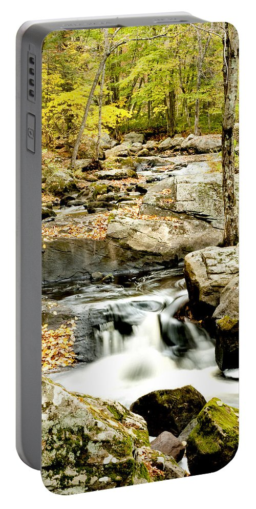 Woods Portable Battery Charger featuring the photograph Two Falls by Greg Fortier