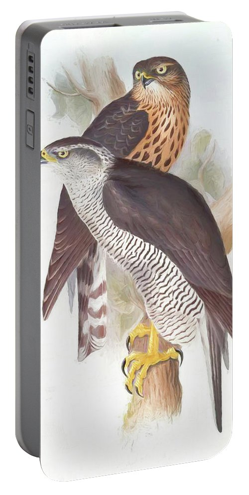 Goshawk Portable Battery Charger featuring the digital art Two Goshawks by Roy Pedersen
