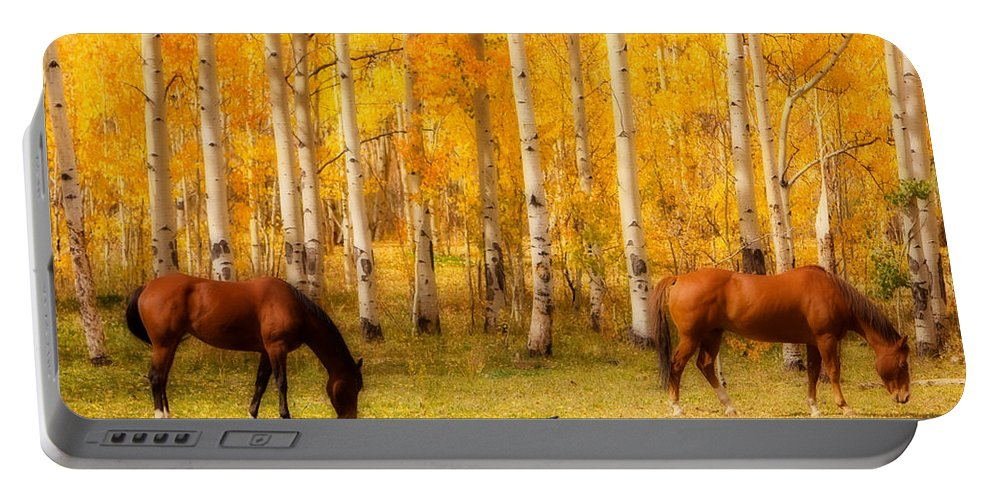 Autumn Portable Battery Charger featuring the photograph Two Horses In The Colorado Fall Foliage by James BO Insogna