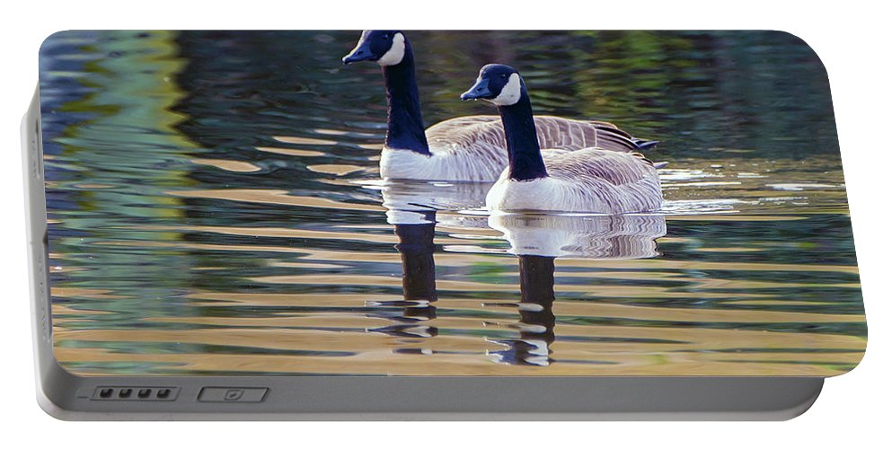 2d Portable Battery Charger featuring the photograph Two Of A Kind by Brian Wallace
