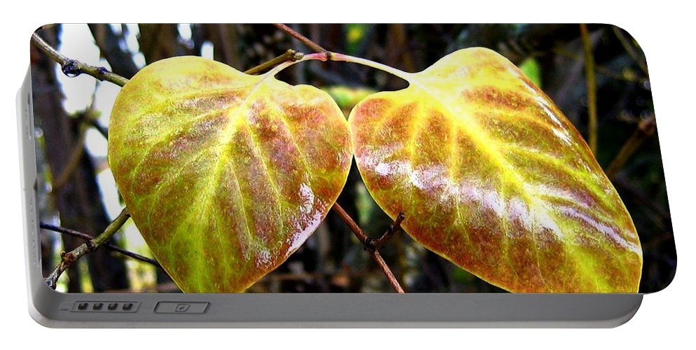 Autumn Portable Battery Charger featuring the photograph Two Of A Kind by Will Borden
