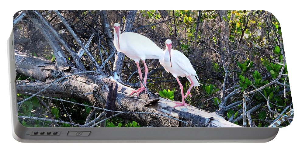 Nature Portable Battery Charger featuring the photograph Two On A Tree by Beth Williams